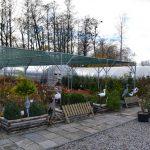 Ogród Akademia Kwiatowa