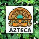 Ziele Azteców